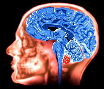 Neurological and/or Psychiatric Disorders and Glutathione